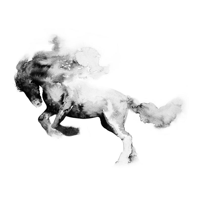 Horsemanship Showcase 2021 - Contest