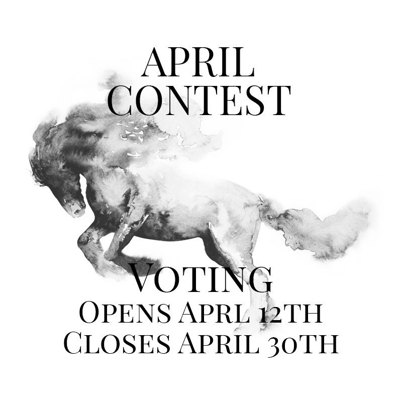 Horsemanship Showcase 2021 - April Contest