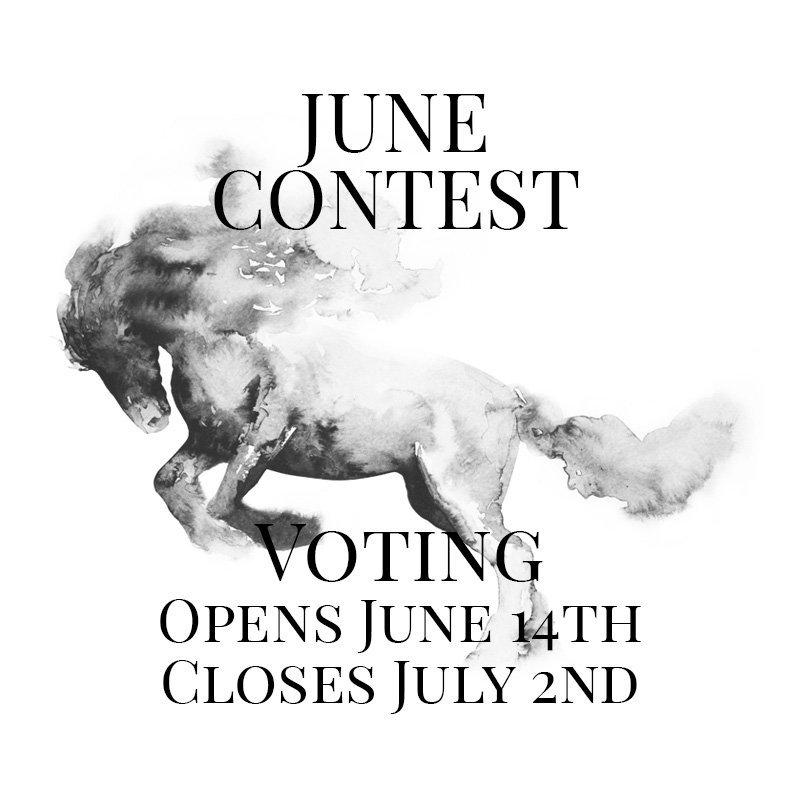 Horsemanship Showcase 2021 - June Contest