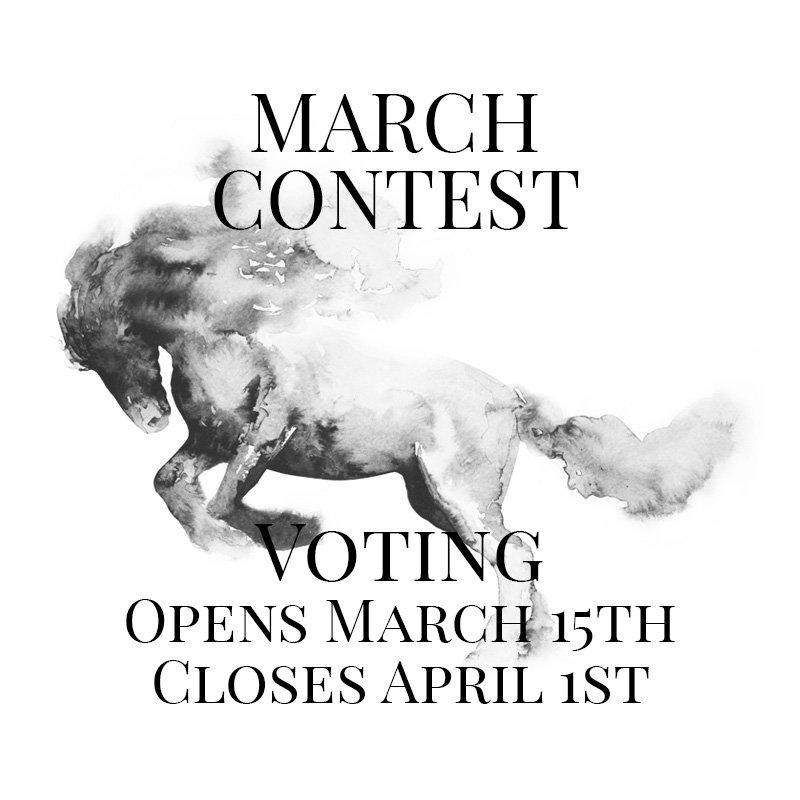 Horsemanship Showcase 2021 - March Contest